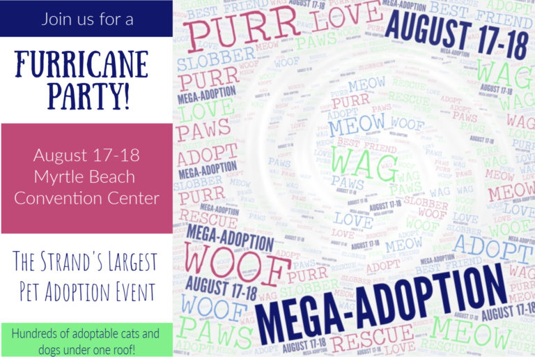Furricane Party – The Strand's Largest Mega Pet Adoption